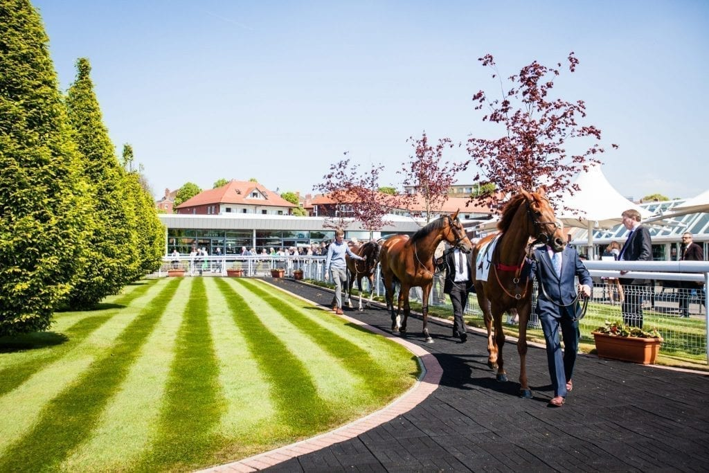 Chester Races 2021 Season Tickets to go on Sale on Monday! | Chester.com