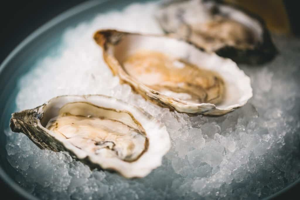 The Yard Oysters Italian Fine Dining Chester