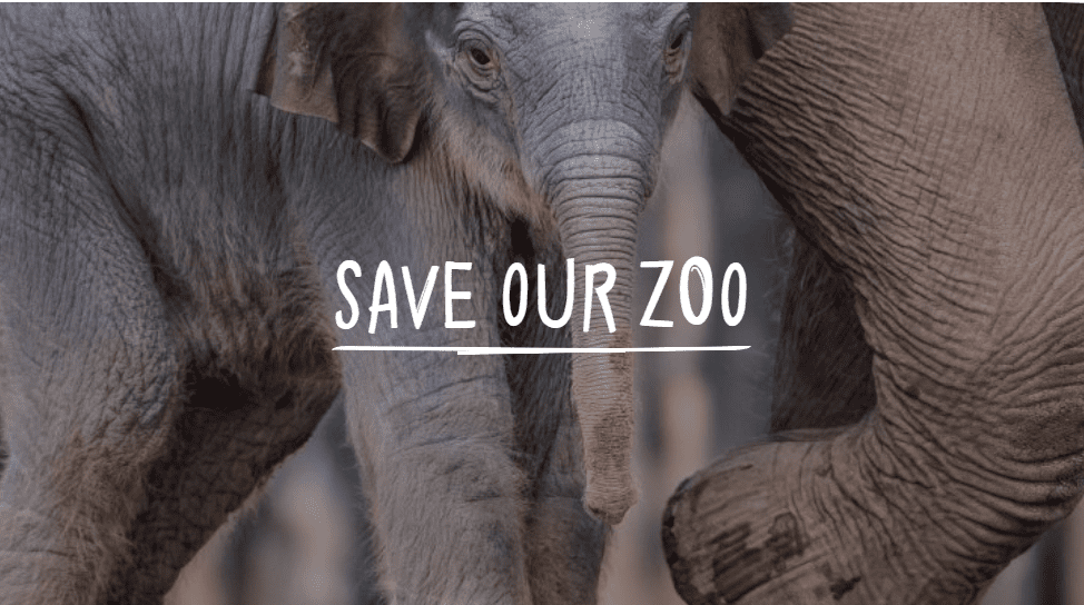 Chester Zoo Save Our Zoo
