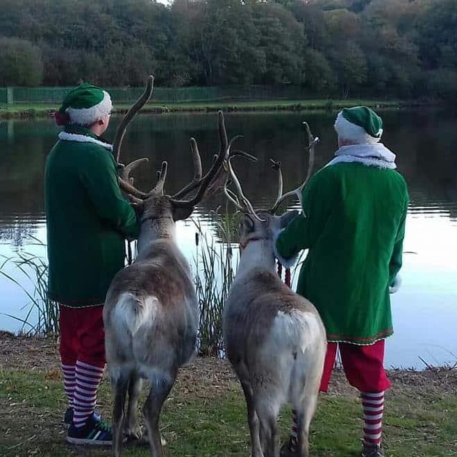 Reindeer Lodge Visit Santa Grotto Visit Reindeer