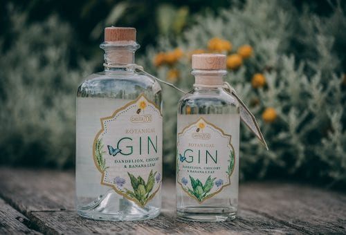 Chester Zoo Gin