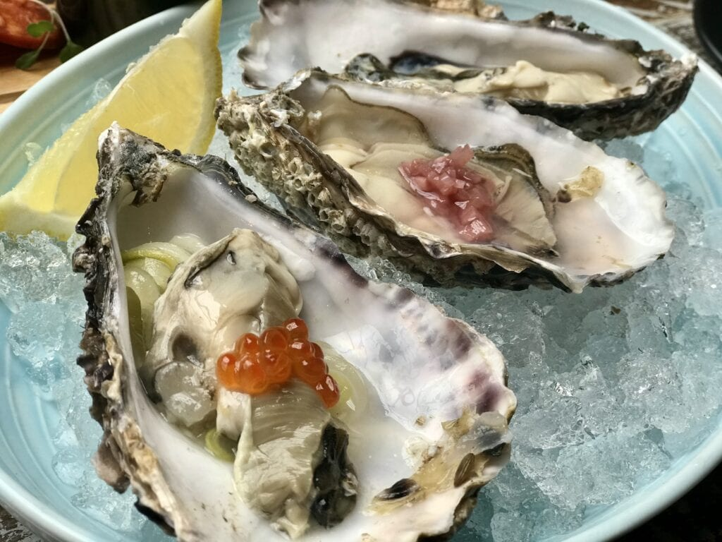 the suburbs oysters