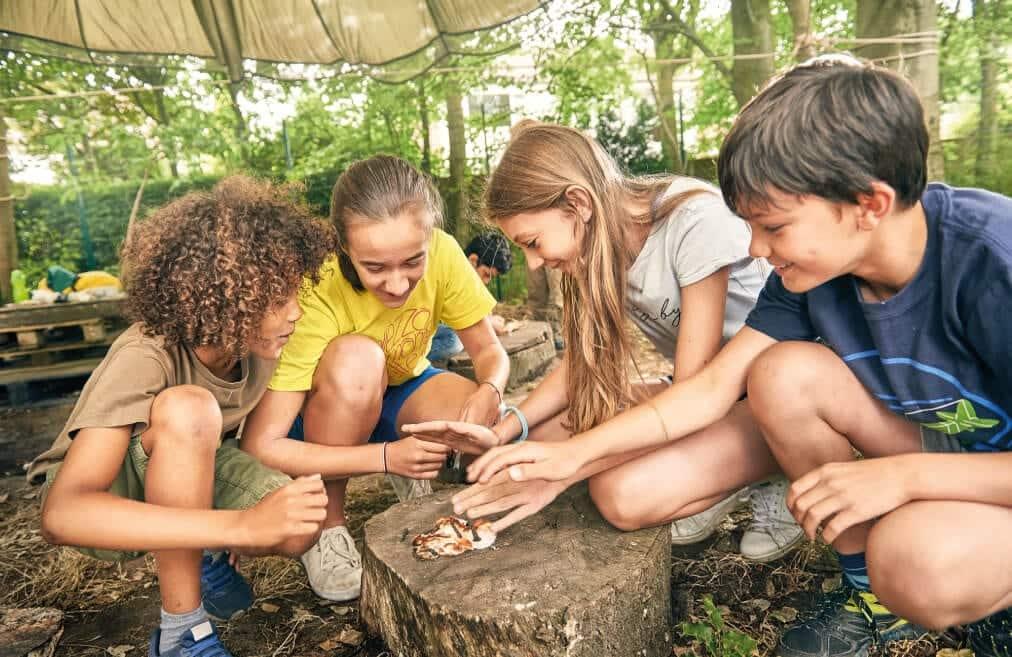 united adventure camp wild explorers